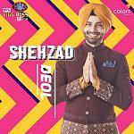 Shehzad Deol: Shehzad was a finalist on season one of 'Ace Of Space', almost similar in concept to 'Bigg Boss'. It remains to be seen if his...